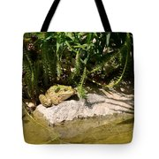 Green Frog Sitting At The Pond Tote Bag