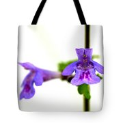 Ground-ivy Tote Bag
