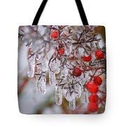 Holiday Ice Tote Bag