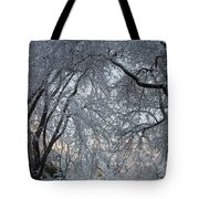 Ice Storm On The 6th II Tote Bag