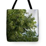 Keep Fresh Tote Bag by Atul Daimari