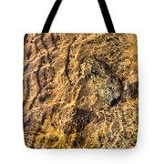 Lakescape 1 Tote Bag