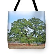 Land In The Hood Tote Bag