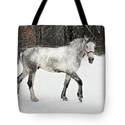 Light  Grey Horse Goes On A Winter Glade  Tote Bag