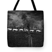 Line Of Cows Tote Bag