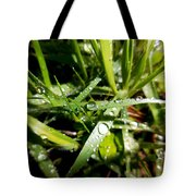 Look Down For Beauty Tote Bag