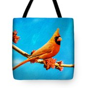 Male Northern Cardinal Perched On Tree Branch Tote Bag