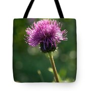 Melancholy Thistle Tote Bag