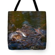 Mixed Frogs Tote Bag