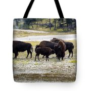 North American Female Buffalo And Her Offspring Showing Affecti Tote Bag