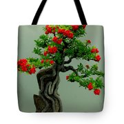 Red Berried Bonsai Tote Bag