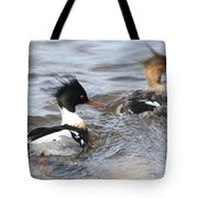Red-breasted-merganser-ducks Tote Bag