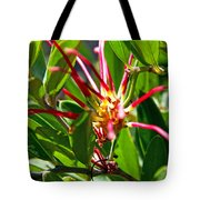 Red Spider Flower Close Up Tote Bag