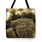 Shrub In Santa Fe Tote Bag