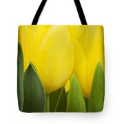 Spring Yellow Tulips Tote Bag