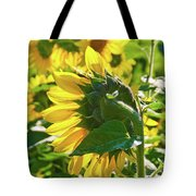 Sunflower 7249a Tote Bag