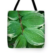Tears Of Solomons Tote Bag