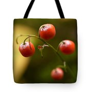 The Berries Of The Lily Of The Valley Tote Bag