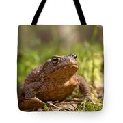 The Common Toad 3 Tote Bag