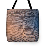 Tracks At First Light In Death Valley Tote Bag