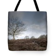 Tree On The Common  Tote Bag