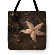 Vanishing Star Tote Bag