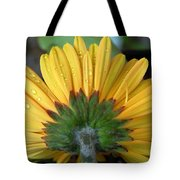 Water Drops On Gerbera Daisy Tote Bag