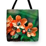 Wildflowers 5 -  Polemonium Reptans  - Digital Paint 3 Tote Bag