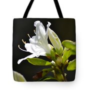0032  Blossoming Tote Bag