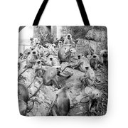 India: Monkey Temple Tote Bag