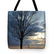 015 April Sunsets Tote Bag