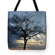 016 April Sunsets Tote Bag