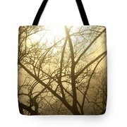 02 Foggy Sunday Sunrise Tote Bag
