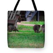 #02 Raccoon Race Tote Bag