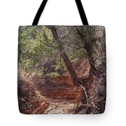030715 Palo Duro Canyon 066 Tote Bag