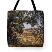 030715 Palo Duro Canyon 092 Tote Bag