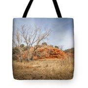 030715 Palo Duro Canyon 160 Tote Bag