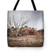 030715 Palo Duro Canyon 161 Tote Bag
