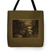 031207-21-s Tote Bag