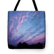 03262013021 Tote Bag