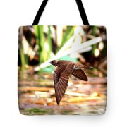 0518 - Northern Rough-winged Swallow Tote Bag