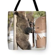 060510-grizzly Back Scratch Tote Bag