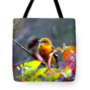 0651 - Baltimore Oriole Tote Bag