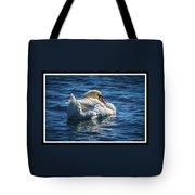 071118-50-c Tote Bag