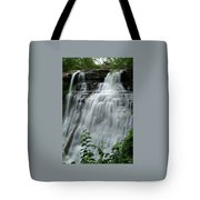 071809-314 Tote Bag