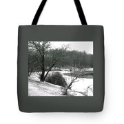072606-24a Tote Bag