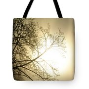 08 Foggy Sunday Sunrise Tote Bag