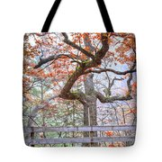 0981 Fall Colors At Starved Rock State Park Tote Bag