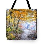 0982 Starved Rock Riverwalk Tote Bag