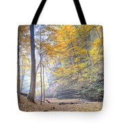 0983 Starved Rock Colors Tote Bag